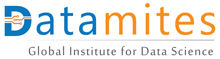 Datamites Logo